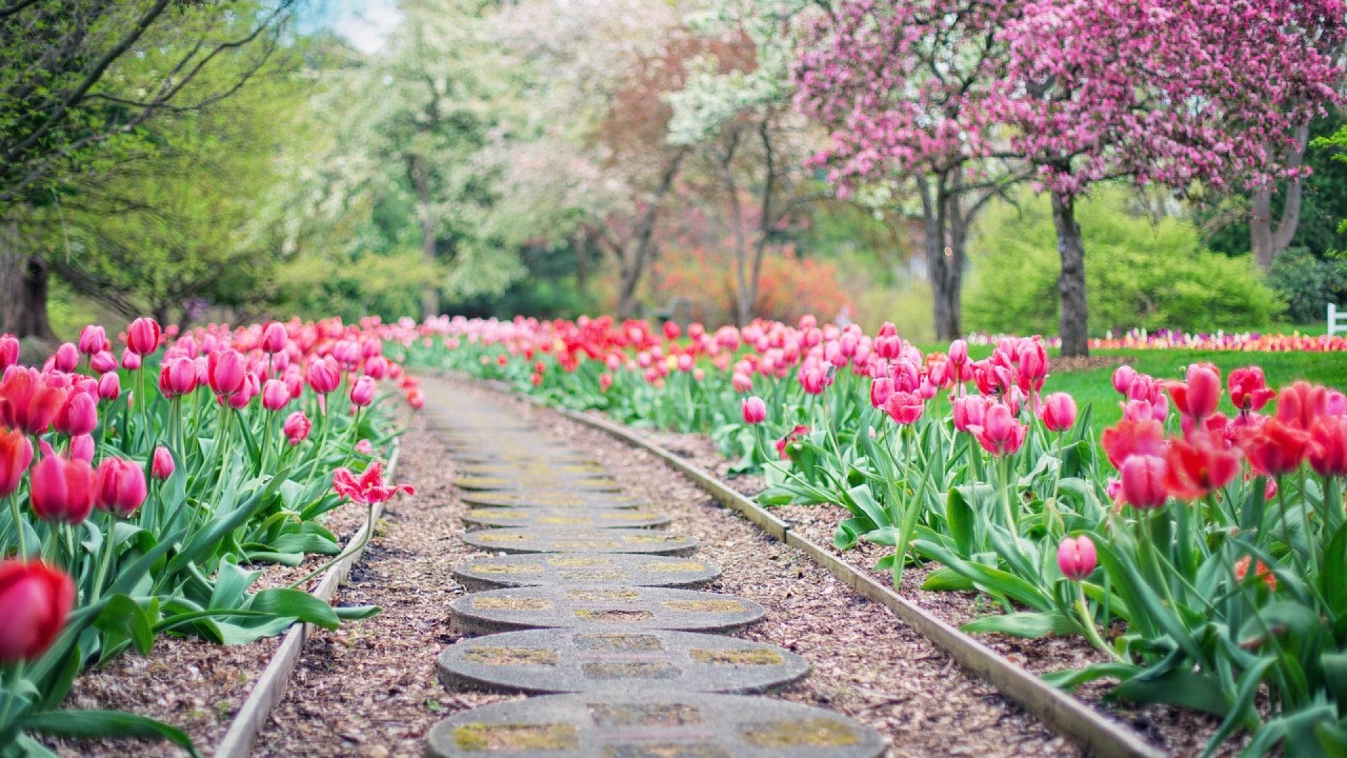 Comment aménager son jardin pas cher ?